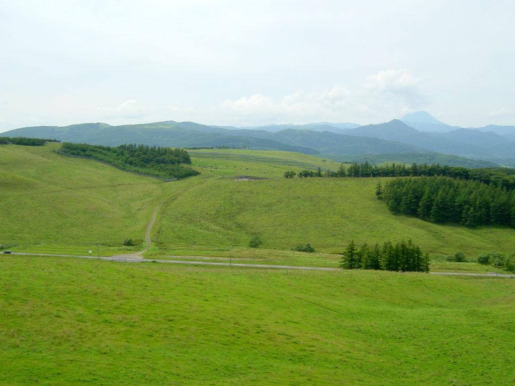 900草原牧場
