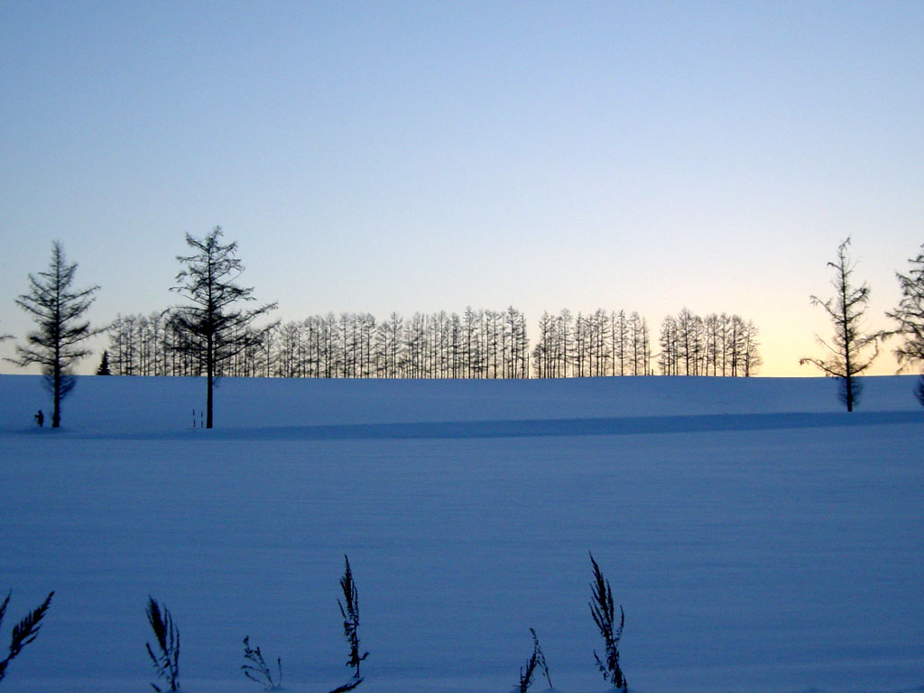 マイルドセブンの丘 夕景