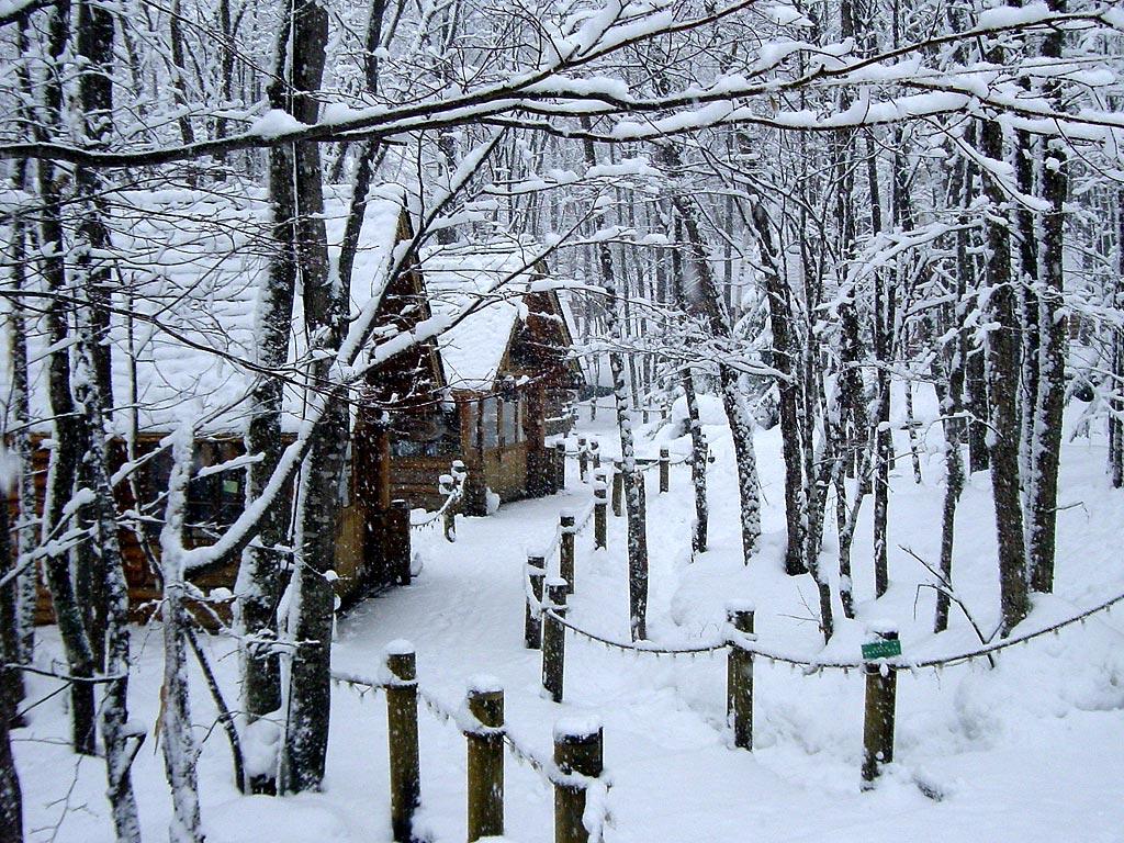 冬のニングルテラス