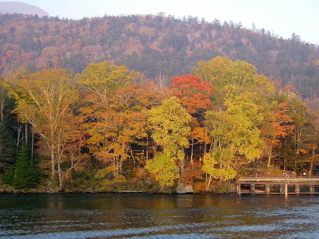 阿寒湖 滝口の紅葉