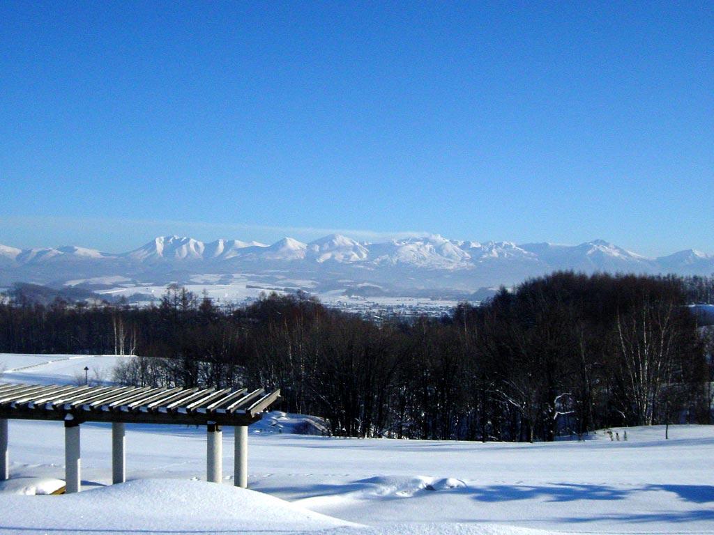 十勝岳連峰(北西の丘展望台より)