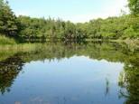 知床五湖 三湖