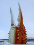 カニ爪のオブジェ