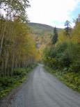 銀泉台への林道